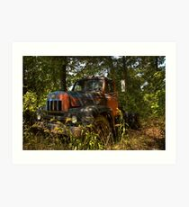 old workhorses never die, they just find some shade to rest in Art Print