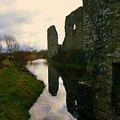 Trim Castle's grounds by Finbarr Reilly