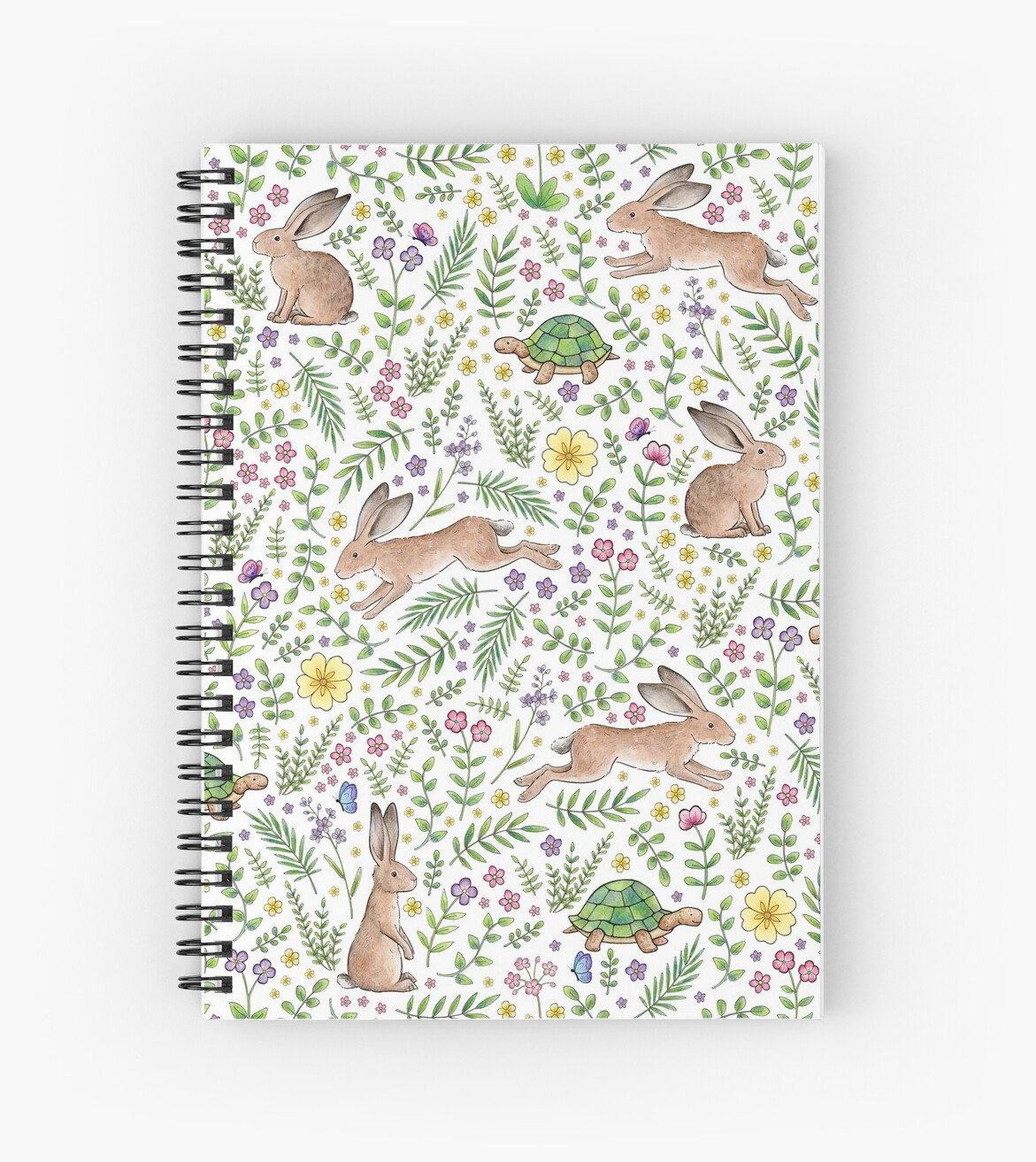 Spring Time Tortoises and Hares by Hazel Fisher