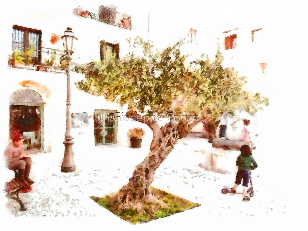 San Felice Circeo Olive tree in the square by Giuseppe Cocco