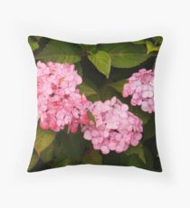 Painter's Delight Throw Pillow