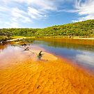 Thurra River - Croajingolong National Park - Victoria - Australia by salsbells69
