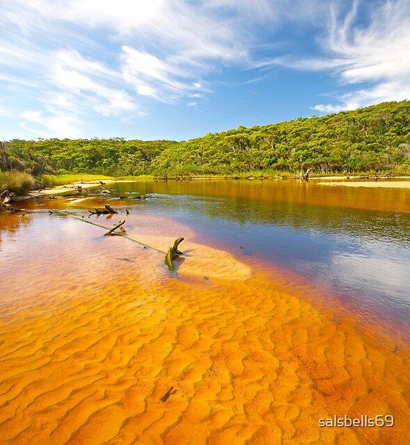 Thurra River - Croajingolong National Park - Victoria - Australia by salsbells69