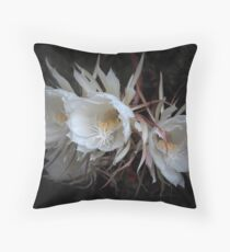 Once upon a dream Throw Pillow
