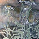 daisy flowers painting by derekmccrea