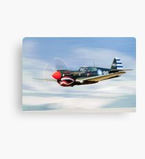 P-40  FLYING  TIGER Canvas Print