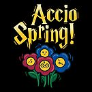 Accio Spring by fishbiscuit