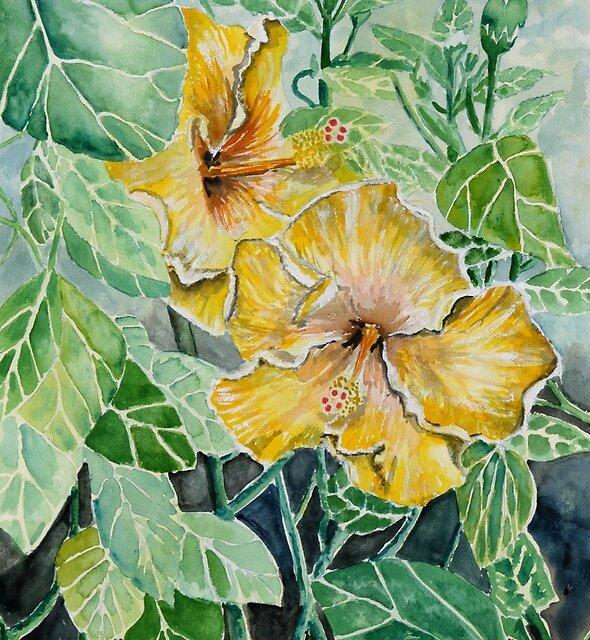 hibiscus flower painting by derekmccrea