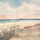 Seascape Beach Florida pier by derekmccrea