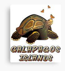 Lámina metálica Galápagos Ecuador Tortuga y Mariposas