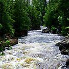 Dorwin Falls, Rawdon, Quebec, Canada by Elfriede Fulda
