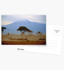 Wildebeest and Kilimanjaro Postcards