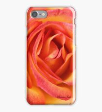Celebrate Joy with a Perfect Rose! iPhone Case/Skin