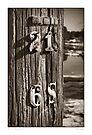 Pole # 15 by Dave  Higgins