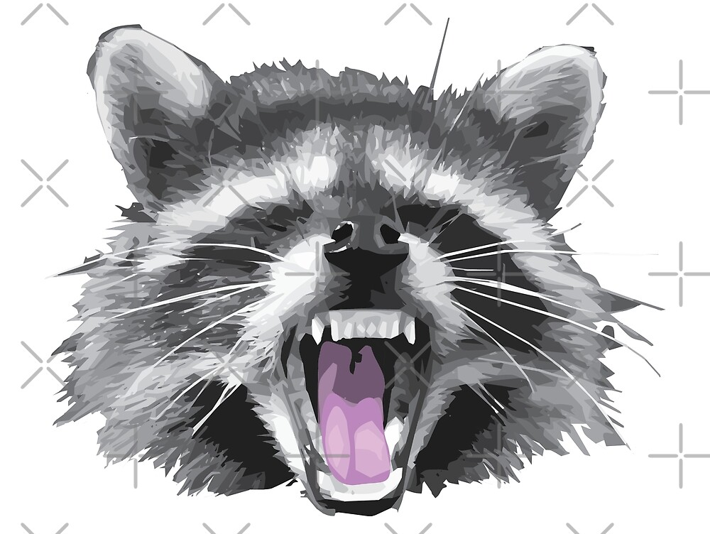 Another raccoon by TheSimpleMan