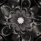 Night Bloom by Julie Shortridge