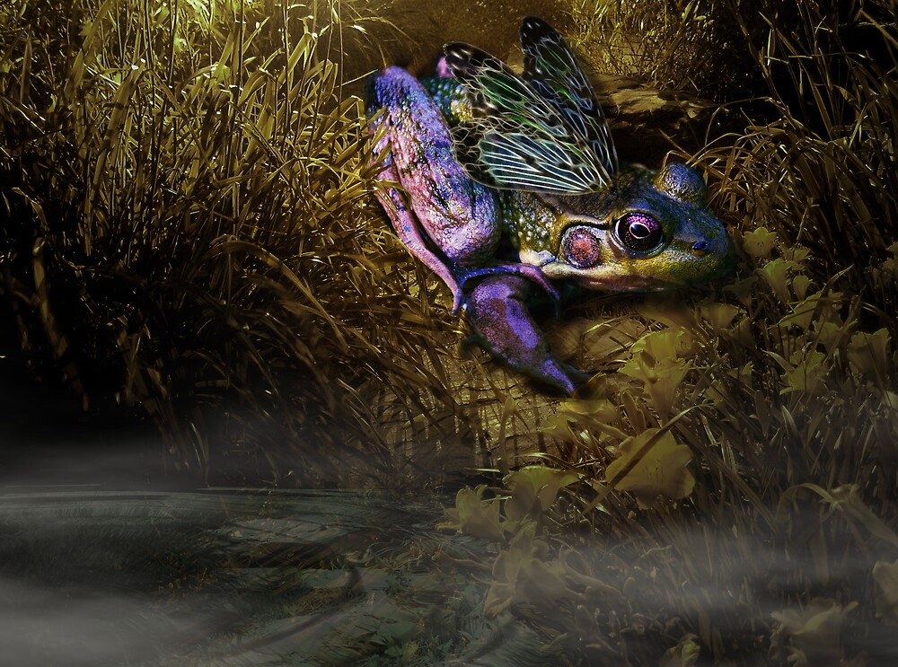 Faerie of the Pond by Johanne Brunet