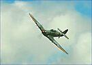 Hawker Hurricane by SWEEPER
