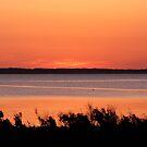 Salt Marsh Sunset Over Chincoteague Bay by Gina Ruttle  (Whalegeek)