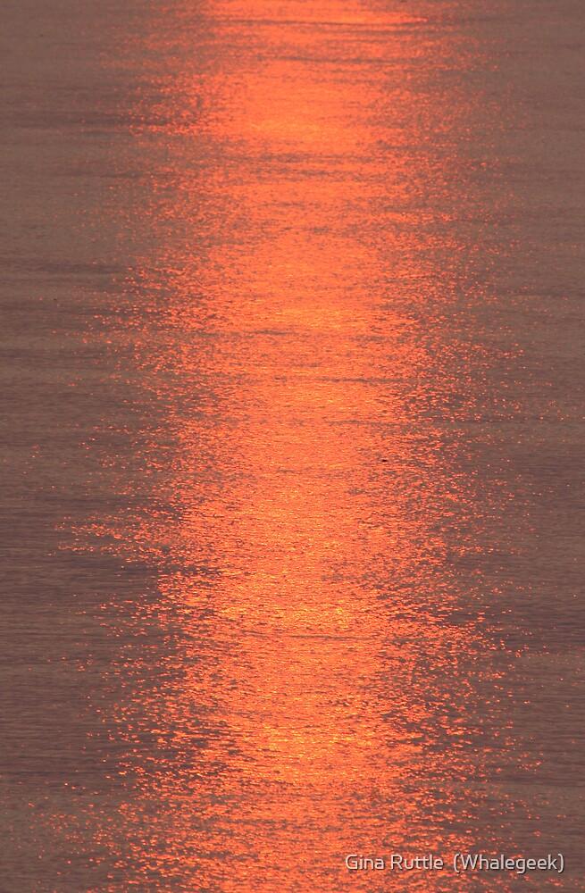 Metallic River Sunset by Gina Ruttle  (Whalegeek)