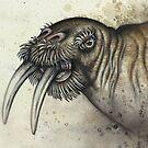 Dürer's Walrus by Kaitlin Beckett