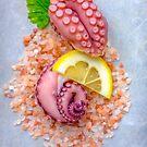 Octopus and pink salt by alan shapiro
