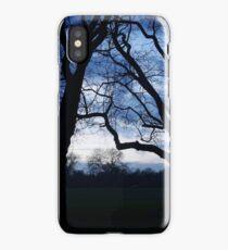 Victoria Park iPhone Case/Skin
