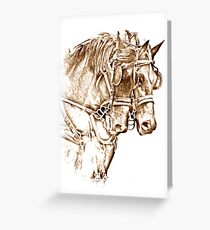 Team of Mares Greeting Card