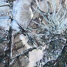 glass: shattered by sticky