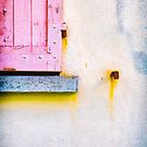 The rotting pink shutter by Silvia Ganora