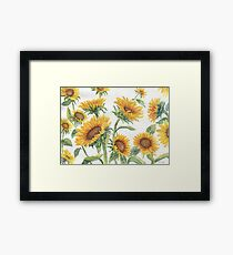 Blooming Sunflowers Framed Print