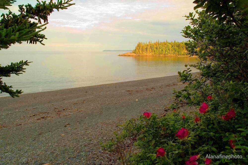 Racoon Beach at sunset, Campobello Island by Alana Ranney