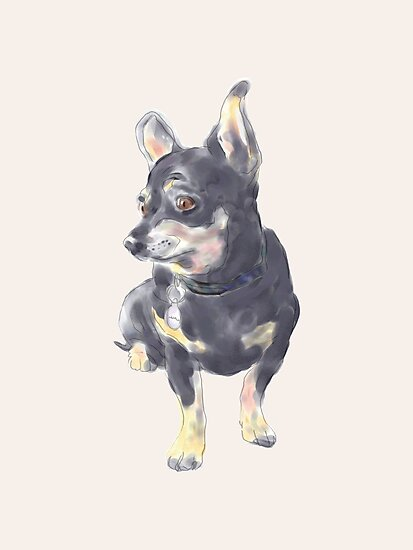 Little Dog Waiting by Dan Tabata