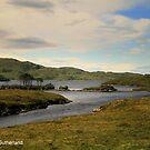 Loch Assynt by Alexander Mcrobbie-Munro