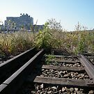 Abandoned Rails, Midtown West, New York City by lenspiro