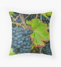 Vineyard, Kaiserstuhl, South-West Germany Throw Pillow