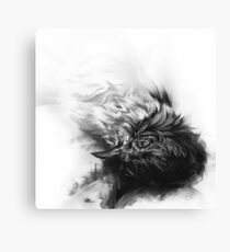 Senescent 4 - charcoal drawing Canvas Print