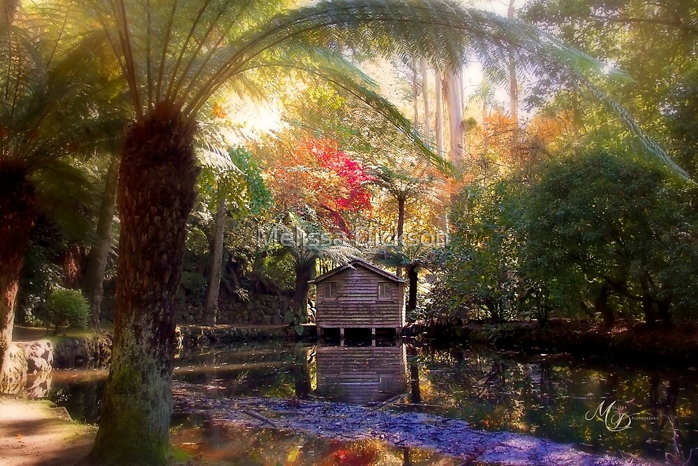 Autumn at the boat shed by Melissa Dickson