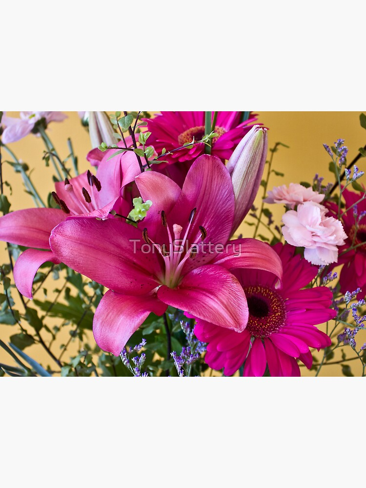 Flowers2 by TonySlattery