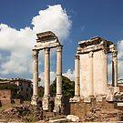 The Ruin of Roman Forum, Rome, Italy by Daniel H Chui