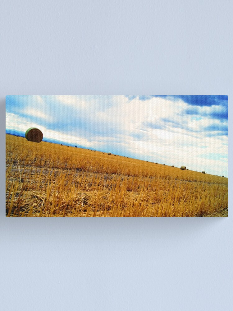 Alternate view of Rolling Downhill Canvas Print