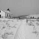 Snowy day by zumi
