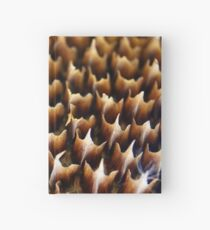 Flames In Nature Hardcover Journal