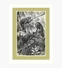 Chameleon Etching Art Print