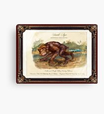 Skunk Ape. Canvas Print