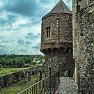Corvin Castle of Romania by Appel