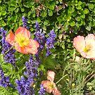 Flowers2 by cetstreasures
