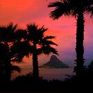 HAWAII FLORIDA CALI by Spiritinme
