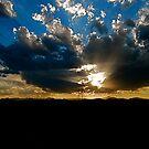 Sunrise Sunset by Pamela Hubbard
