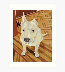 Ed - Super Cool Dog Adopted from the Washington Rescue Alliance Art Print